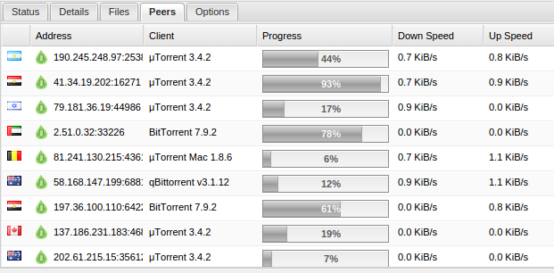 Torrent client showing the IP addresses of everyone connected.